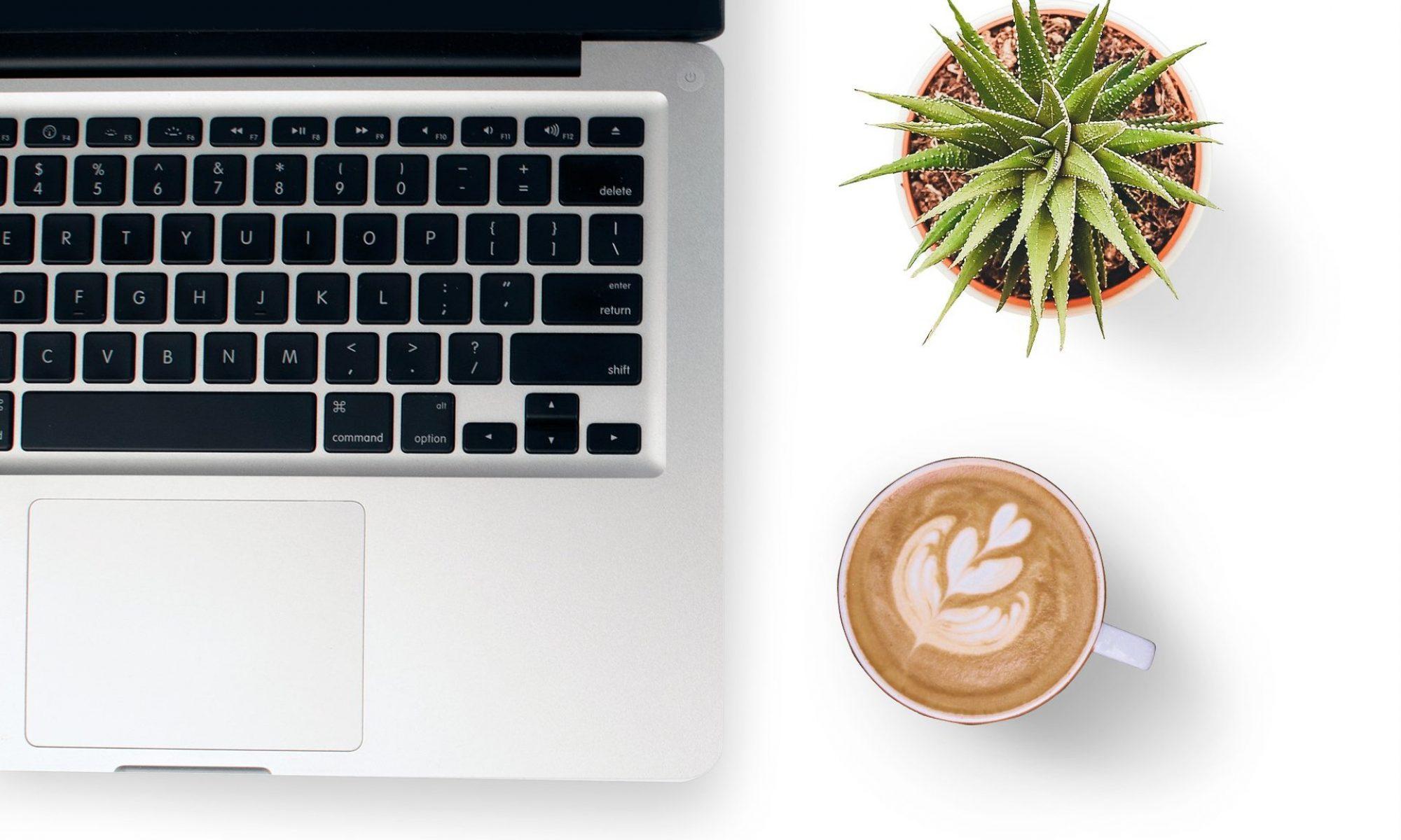 laptop-coffee-plant